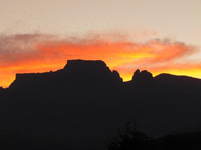 Mafadi Sunset.JPG